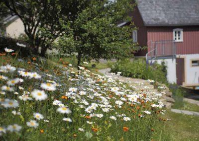 Garten-am-Berghof