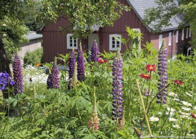 Unser-Bauerngarten