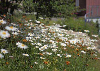 Unser-Garten